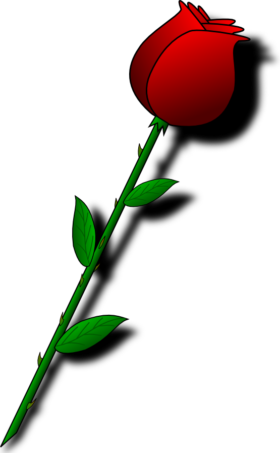 Valentine s pencil and. Flower clipart animated