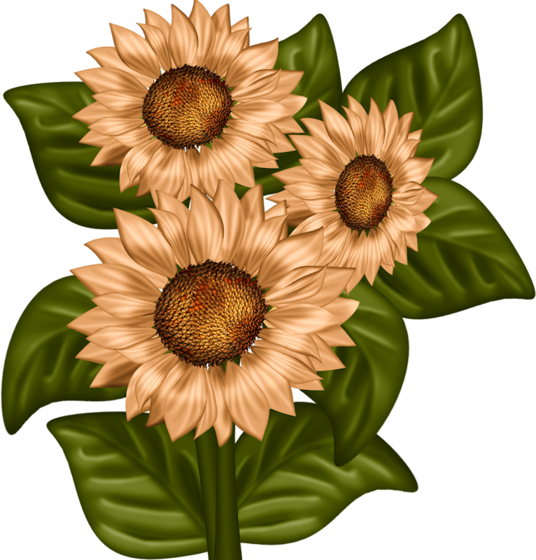 toppers pinterest easter. Flower clipart card