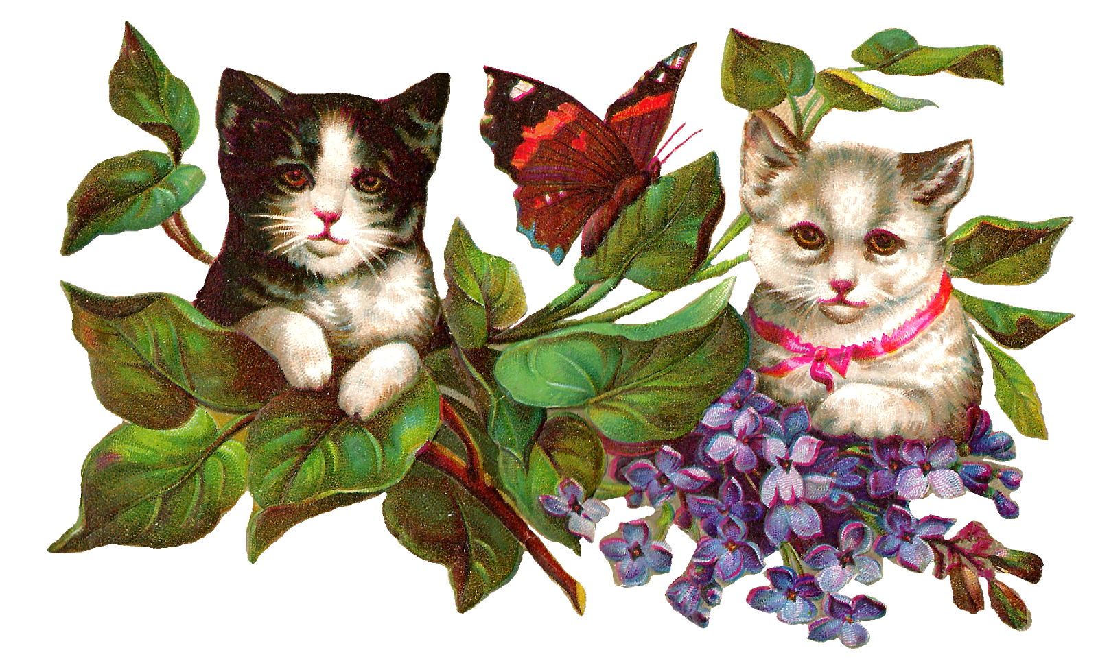 Antique images vintage image. Flowers clipart cat