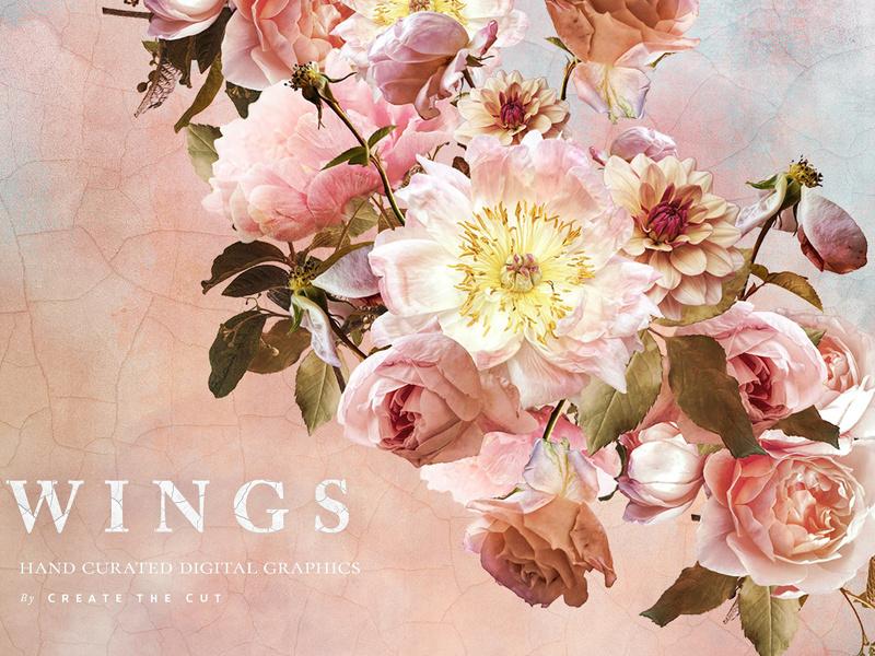 Clip art wings by. Flower clipart digital