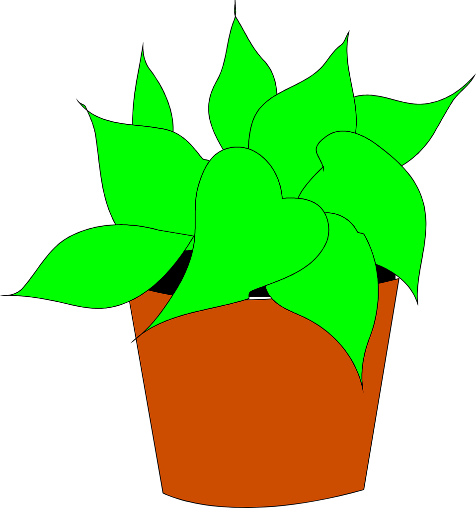Flower clipart house. Plants free stock photo