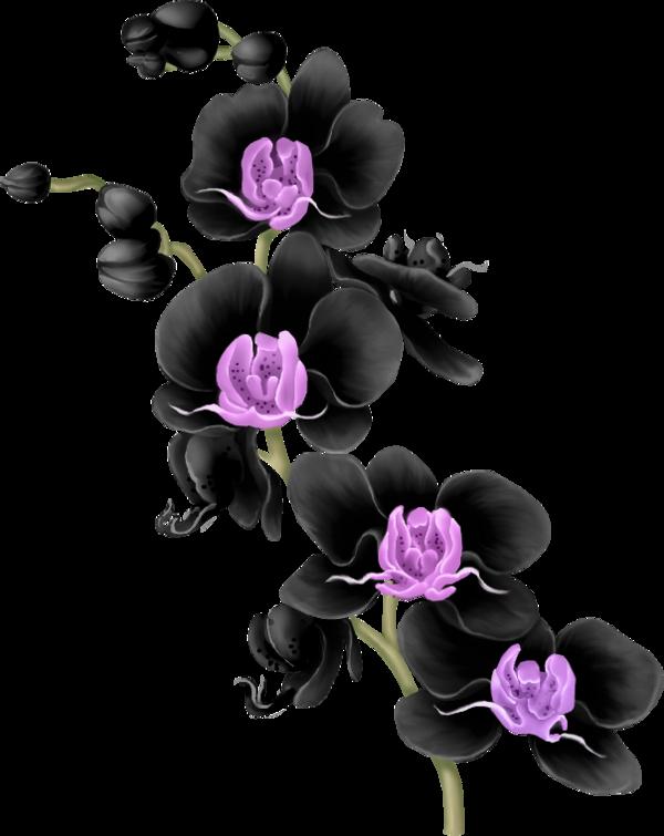 Fleurs flores bloemen png. Flowers clipart origami