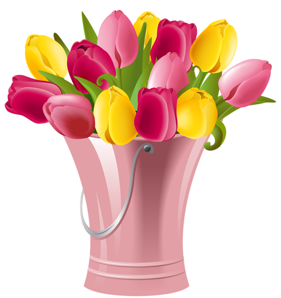 Spring bucket with tulips. Flower clipart planter