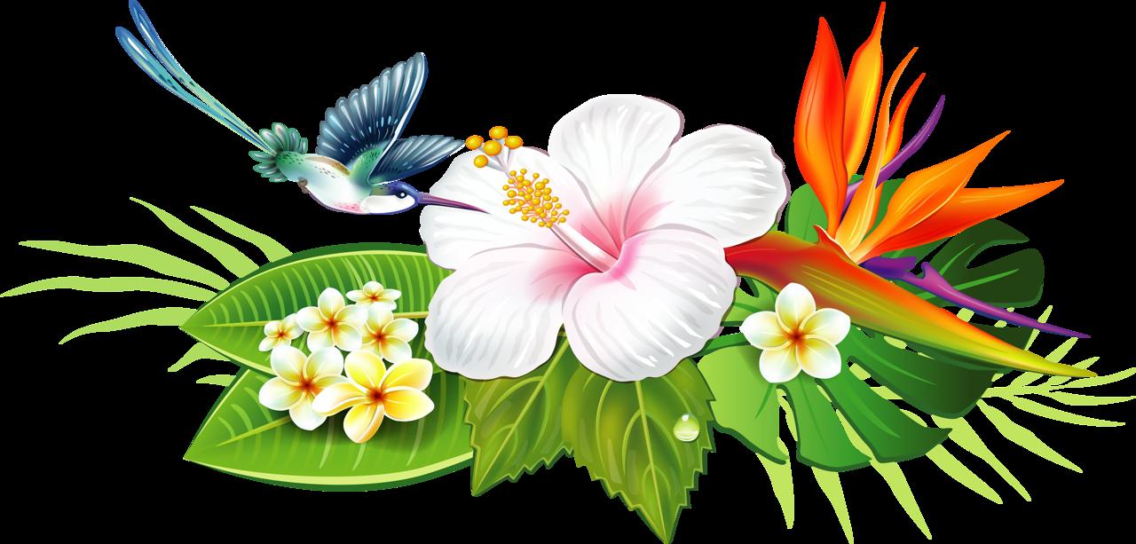 png clip art. Flowers clipart tub