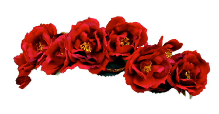 Flower crown png.  red for free