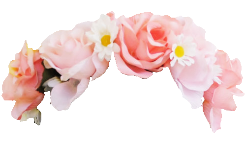 Flower crown png. Transparent pictures free icons