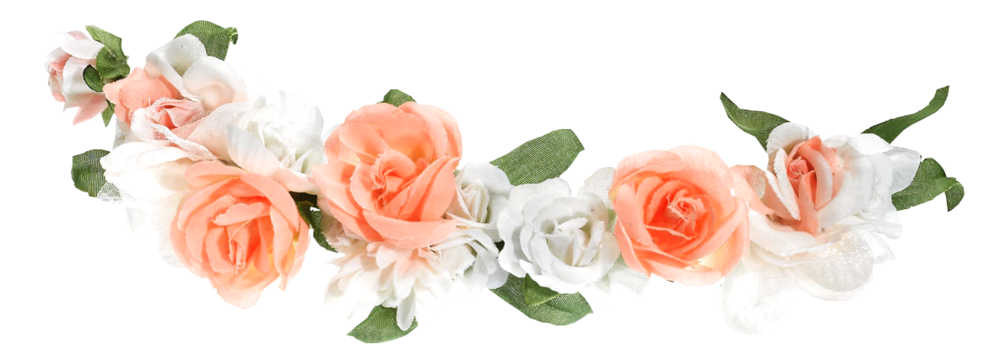 Official psds share this. Flower crown png
