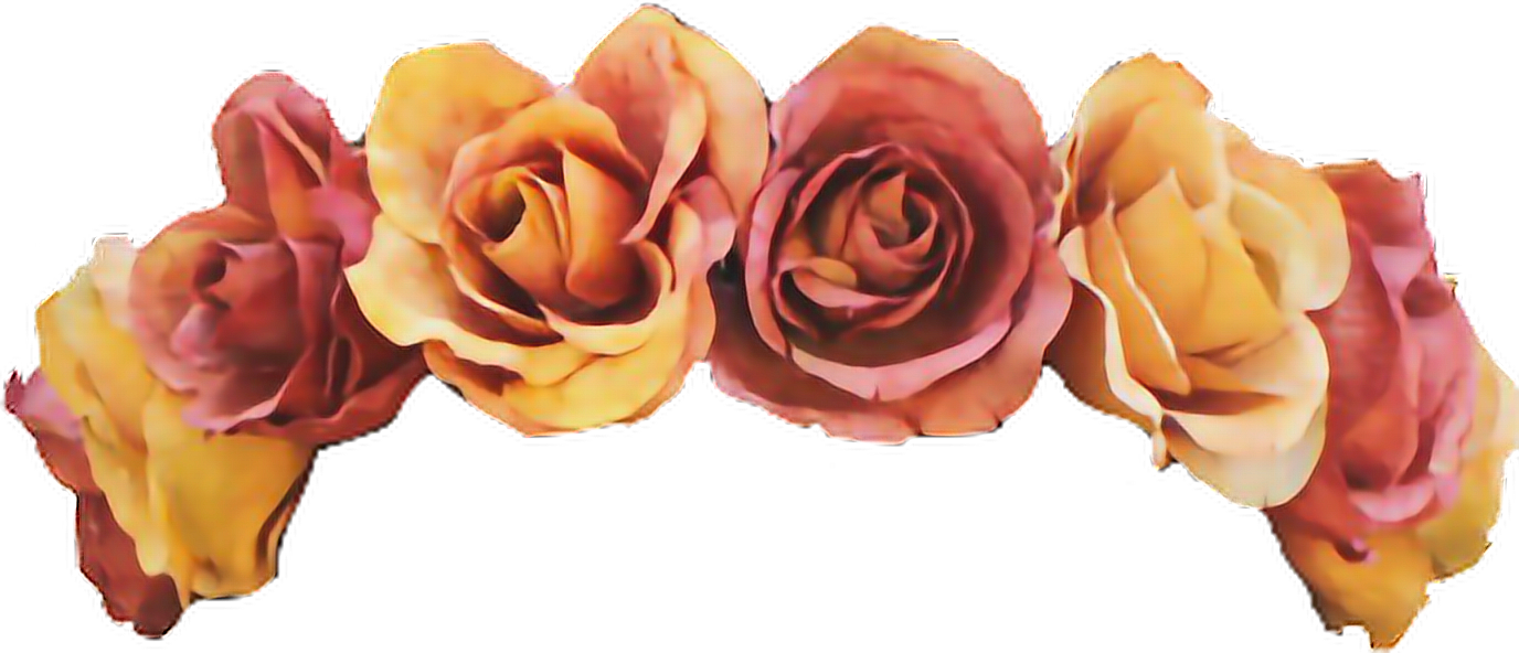 Flower crown png tumblr. Transparent image collections wallpaper