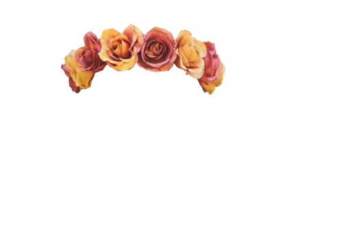 White flower crown png. Transparent tumblr on we