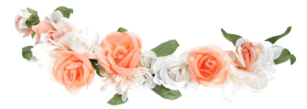 Tumblr flower crown png. Crowns transparent set