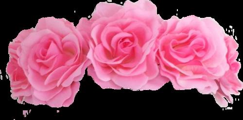 Flower crowns png. Roses crown overlays pinterest