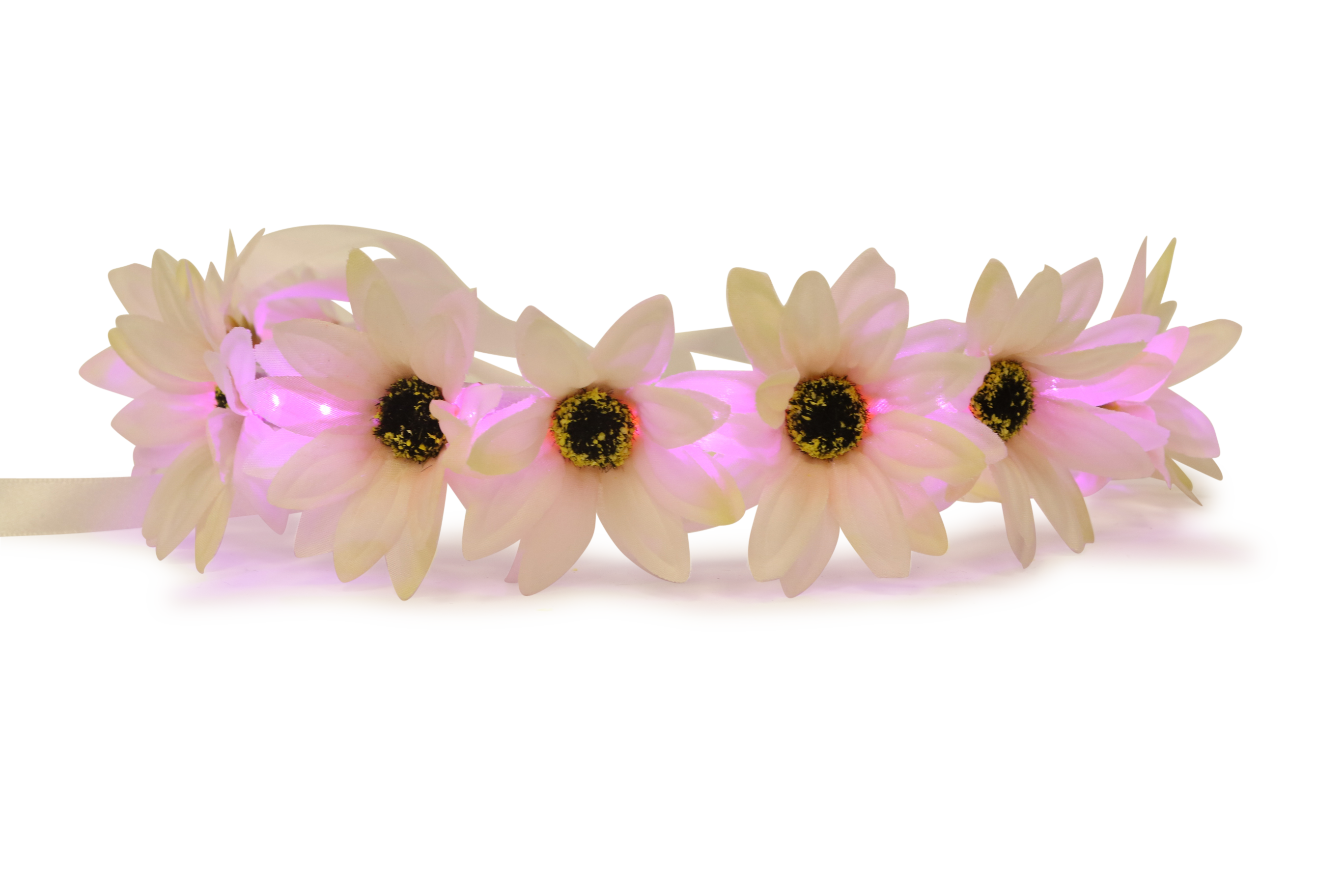 Transparent tumblr image collections. Png flower crown