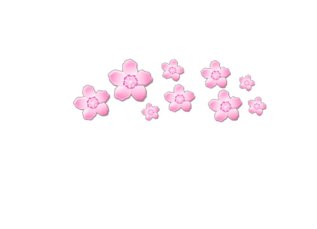 Tumblr flower crown png. Pink pinkflowers flowers cute