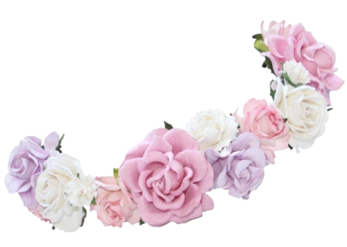 Flower crowns png.