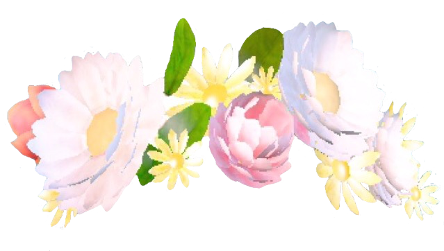 Snapchat crown like or. Flower crowns png