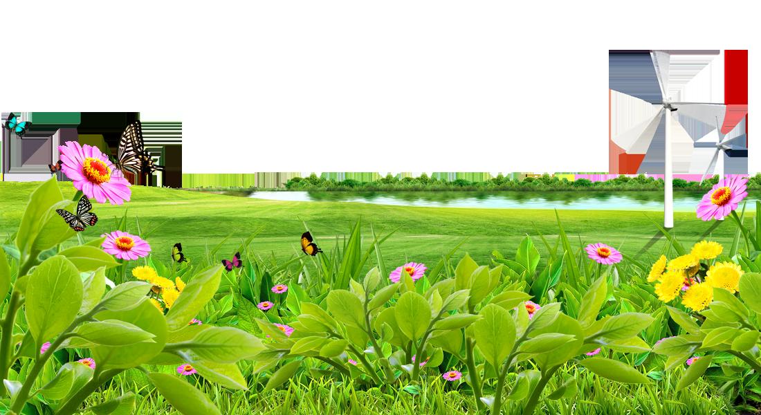 Meadow lawn wallpaper lake. Flower field png