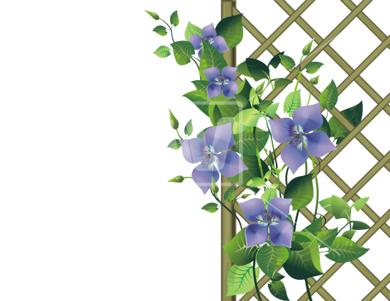Flower garden png. Pergola welcomia imagery stock