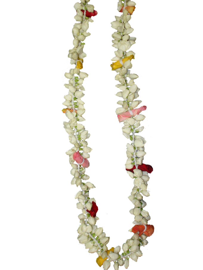 Hindu wedding jasmine transprent. Flower garland png
