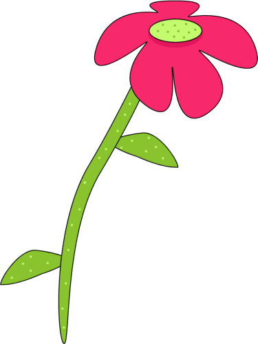 Flower graphic png.  tall transparent download