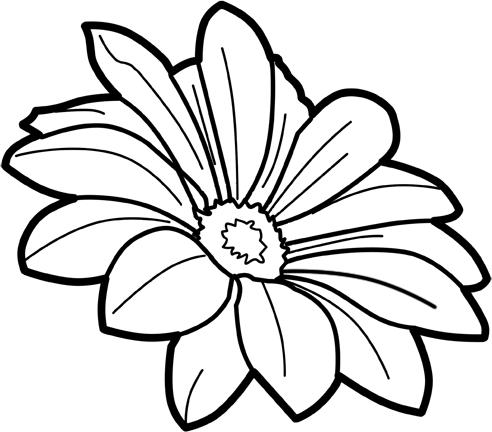 for free download. Flower line art png