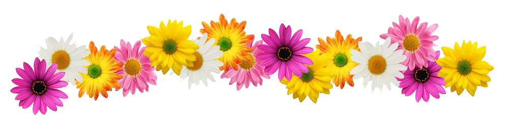 of flowers for. Flower line png