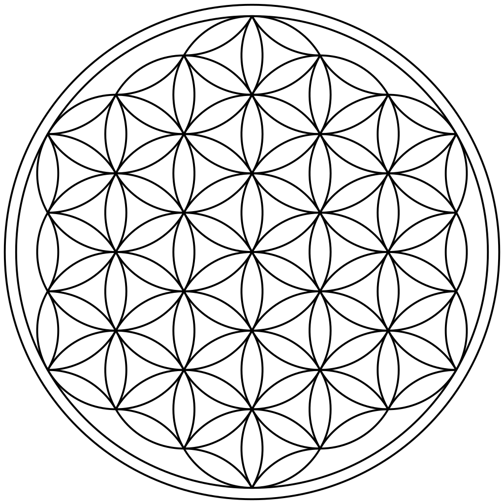 Flower of life png. File circles arcs enclosed