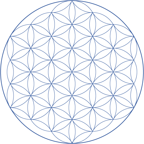 Hexnet. Flower of life png