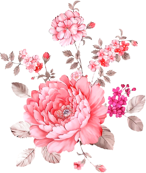 Flower overlay png. Pink flowers transparency for