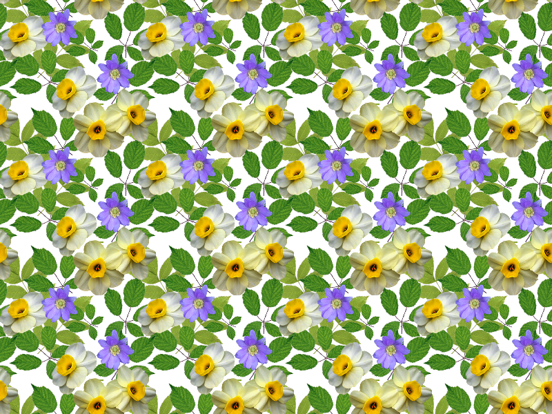 Spring nature grass and. Flower pattern png