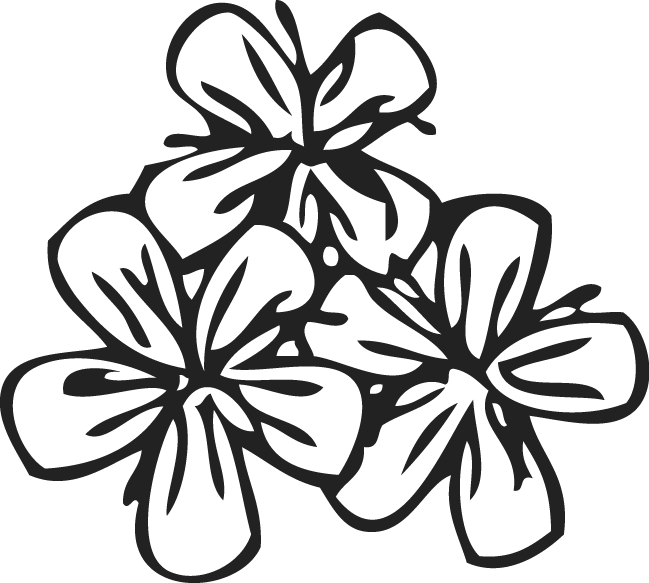 Flower pattern png. By trudos on deviantart