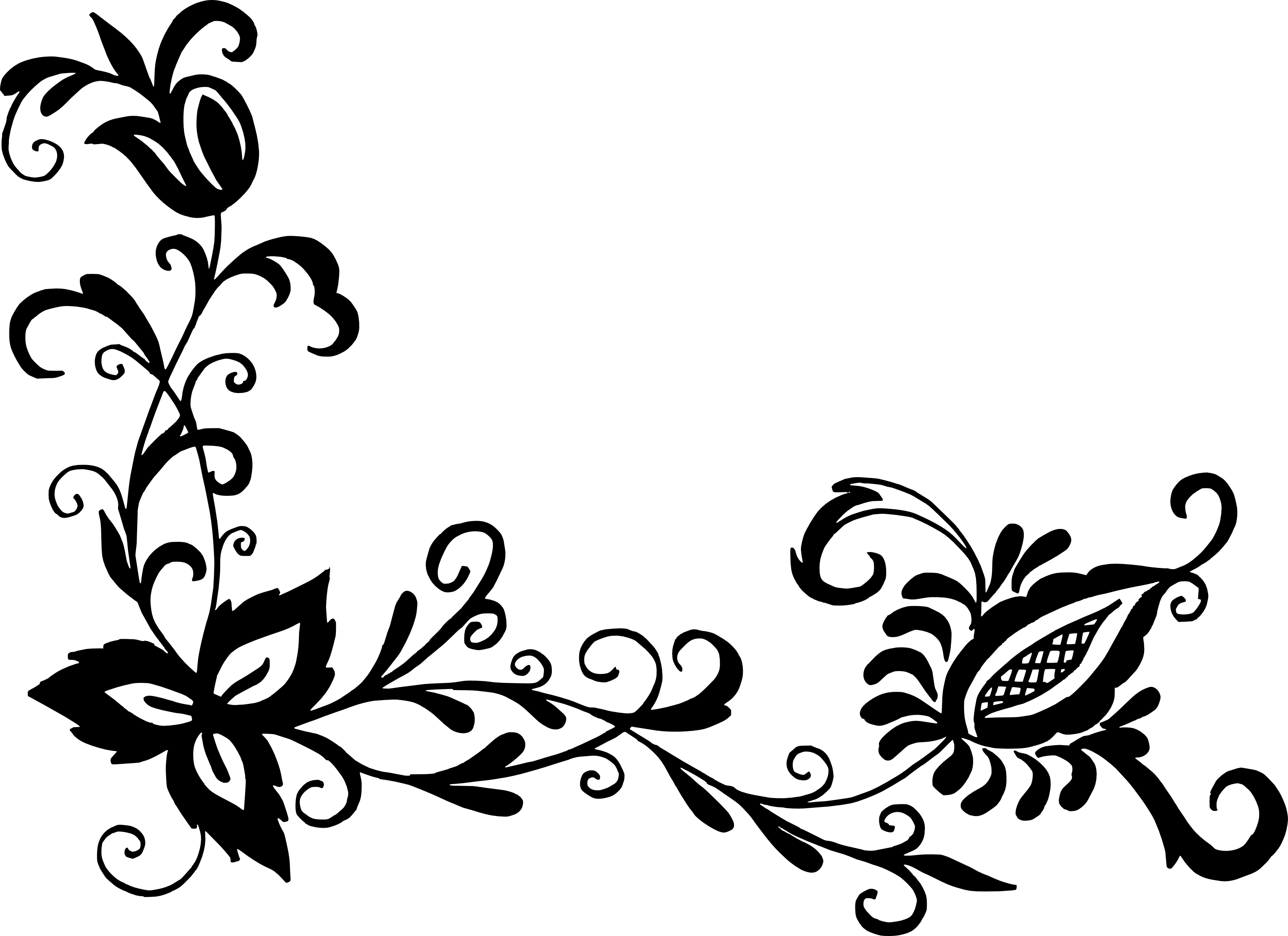 Flower pattern png. Floral transparent corner vector