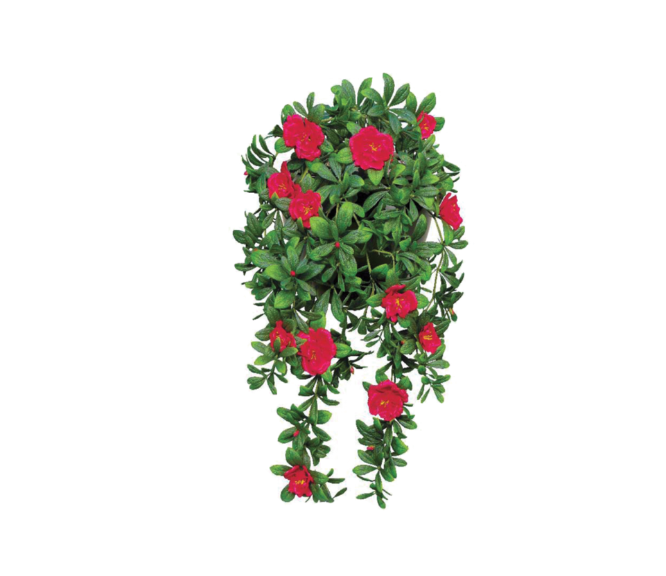 File by theartist on. Flower plant png