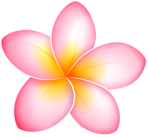 Pink exotic clip art. Flower png clipart
