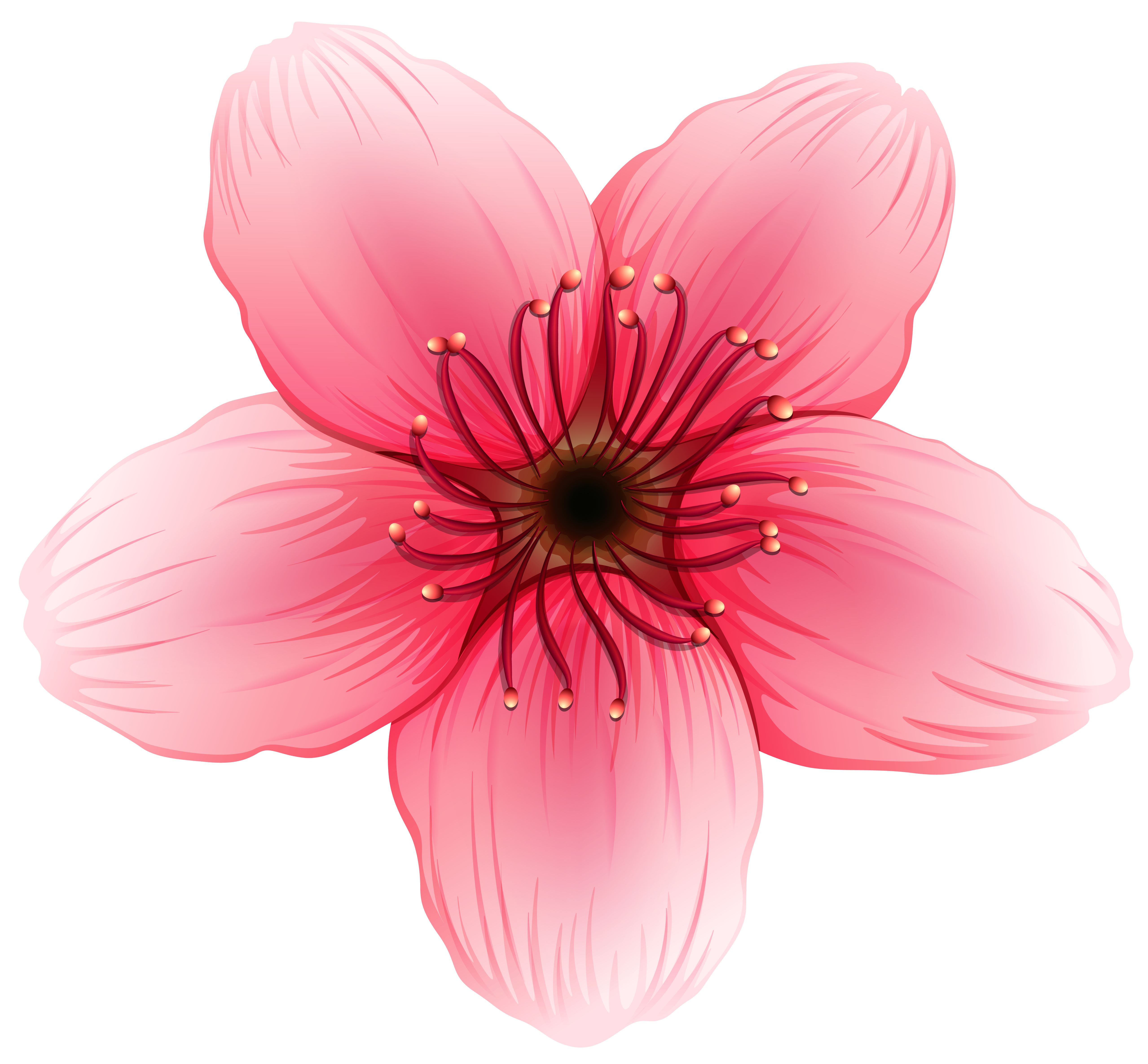 Image gallery yopriceville high. Flower png clipart