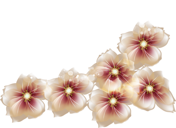 Flower png deviantart. Res brown flowers by