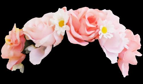 Flower png tumblr. Crown shawnmyluv