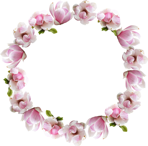 Transparent pictures free icons. Pink flower crown png