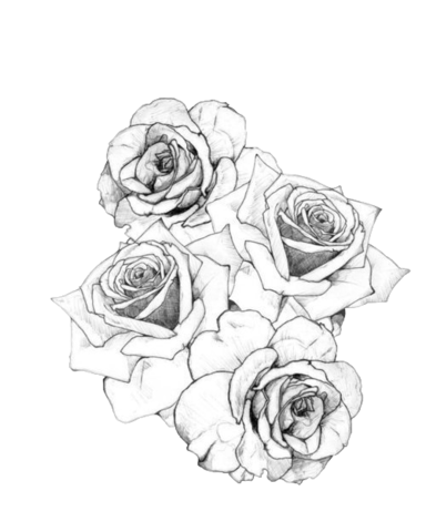 Image tumblr static black. Flower tattoo png