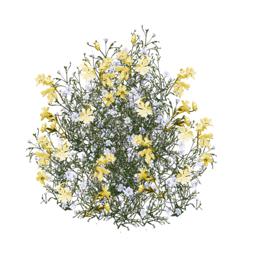 Flower texture png. Script library yellow delicate