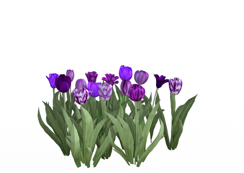 Expansion sets for lisa. Flower texture png
