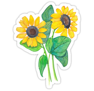 Flower tumblr png.  for free download