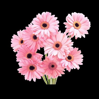 Flower tumblr png. Edit freetoedit overlay flowers