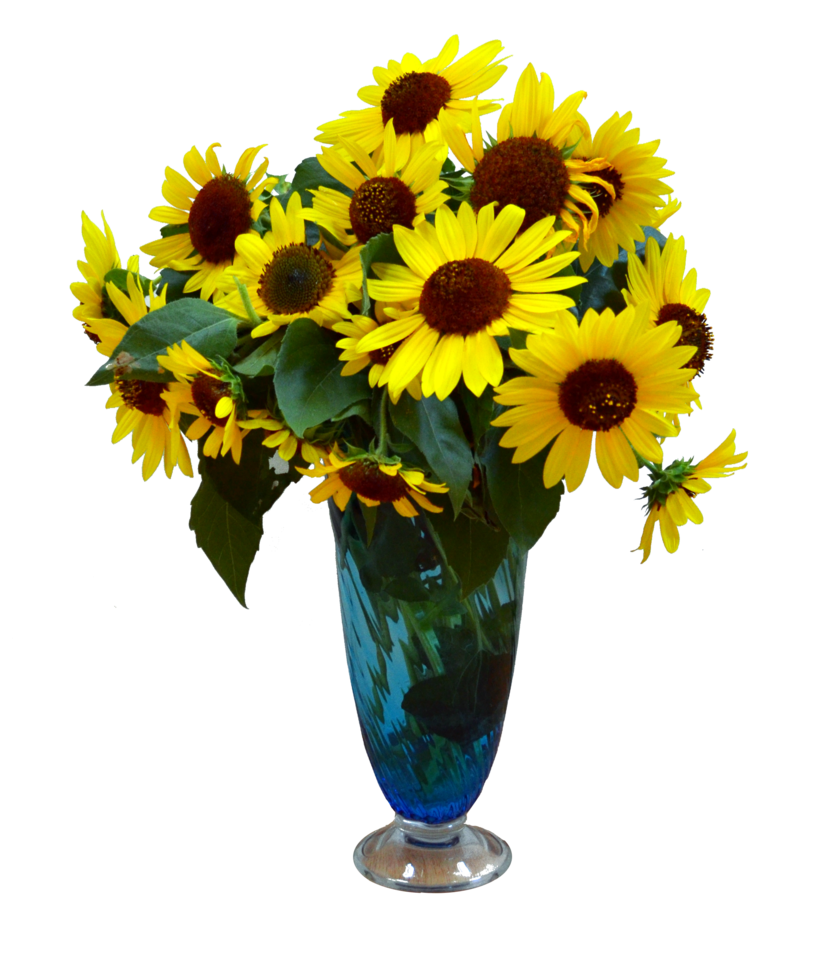 Flower vase png. Sun flowers in stock