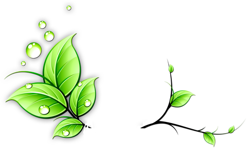 Flowers free icons and. Flower vine png