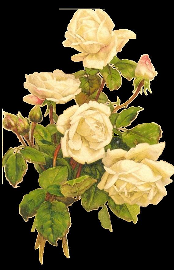 Paper crafts pieces for. Flower vintage png