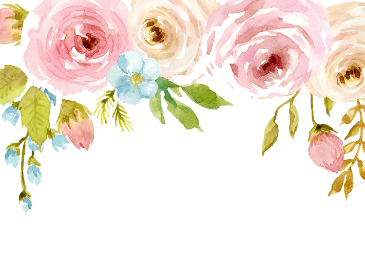 Flowers free download peoplepng. Flower watercolor png