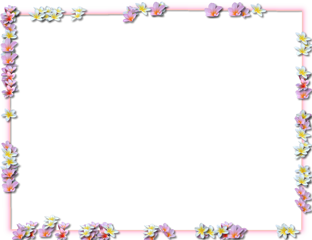 borders pic. Flowers border png
