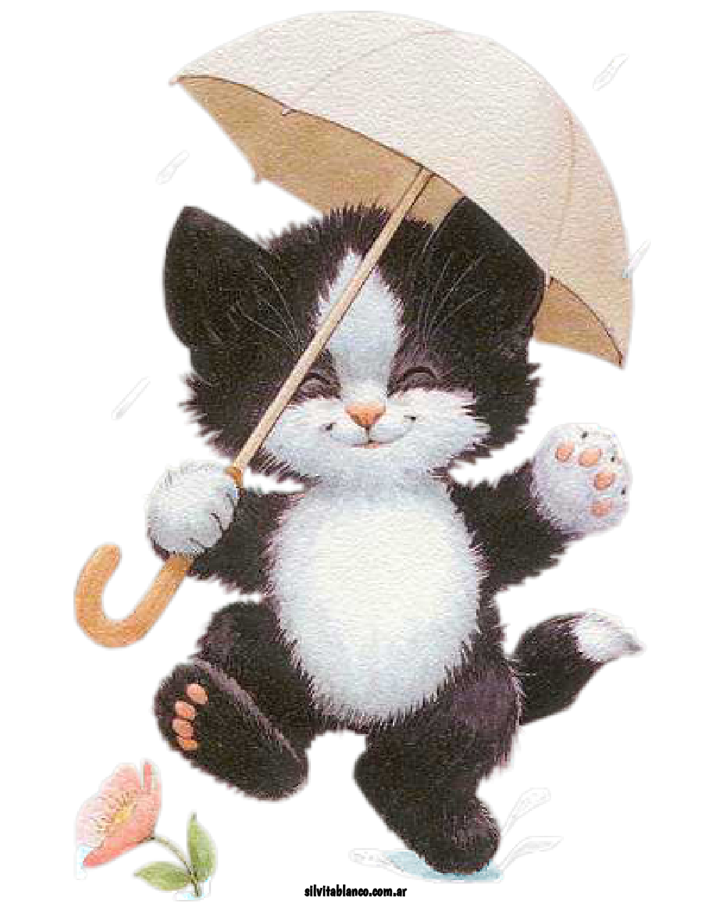 Http www silvitablanco com. Flowers clipart cat