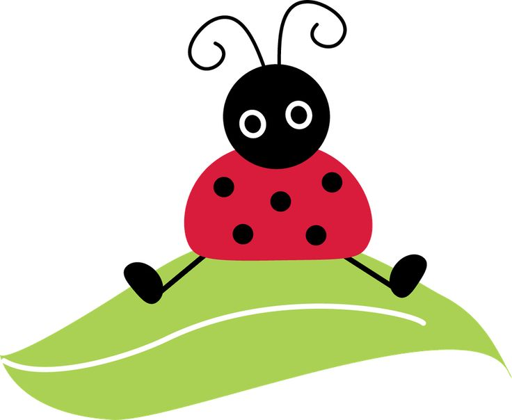 Ladybugs clipart flower. Free download best on