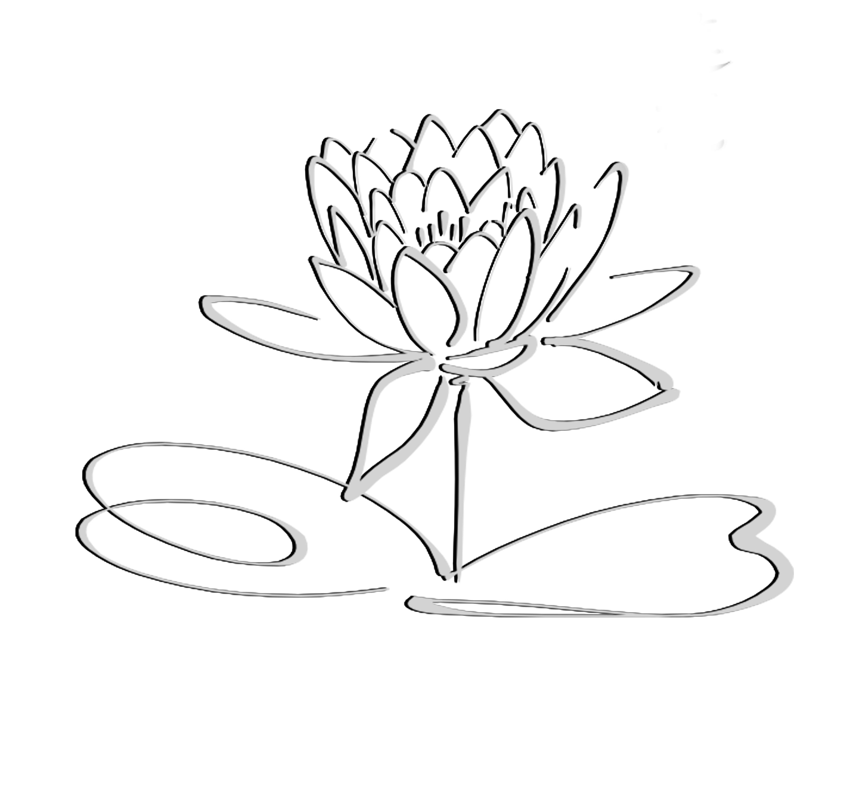 Lotus black grayshadow flower. Flowers clipart logo
